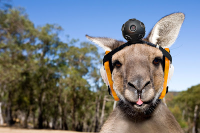 Google Street View Roo Project