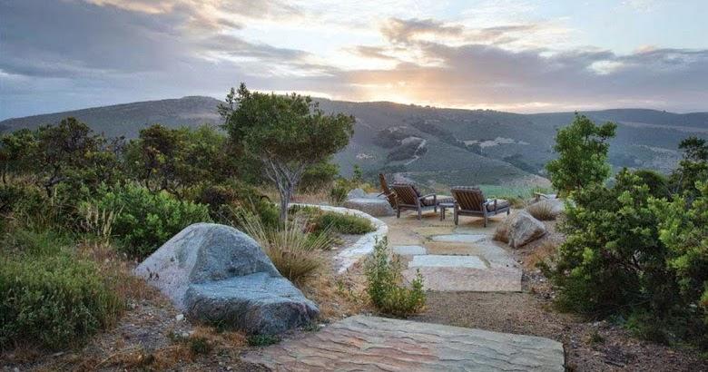 """Garden Bloggers Fling Bernard Trainor Garden Preview: Bernard Trainor Y El """"espíritu De Monterey"""""""