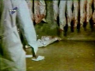 Descargar Pelicula Argentina Carne TVRip 1968