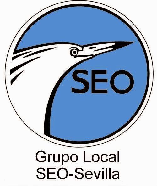Curso de iniciación a la Ornitología. Grupo Local SEO-Sevilla de SEO/BirdLife. Ver y conocer las aves