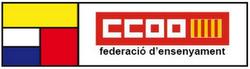 Web de la FE CCOO PV