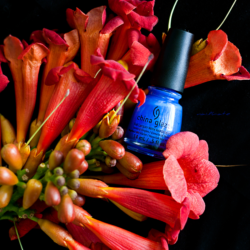 China Glaze 1307 Off Shore Collection I Sea the Point 14ml