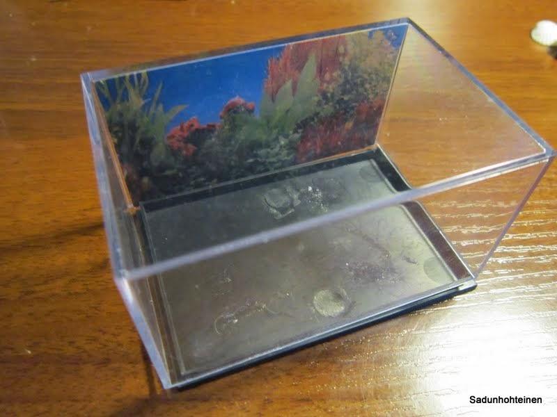kuvia netistä skorpioni ja kalat