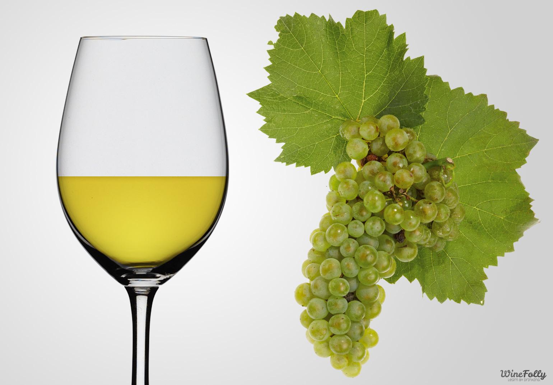 Resultado de imagen para vino blanco
