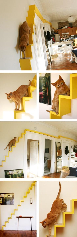 Laiptai katei