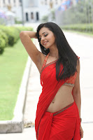 Rakul PReet Sing Lovely Slim Beauty in Various Stunning Saree Dance Stills
