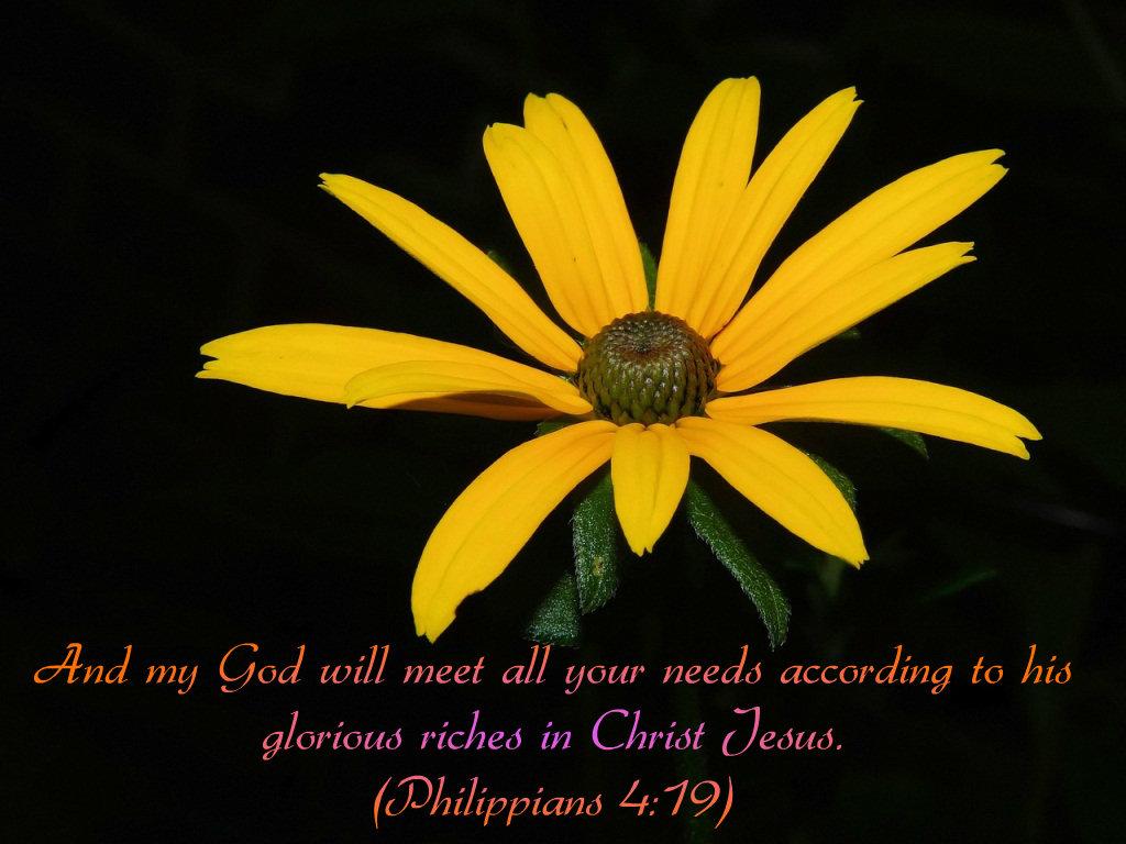 Share Jesus Dr Johnson Cherians Blog August 2014