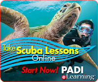 PADI Open Water Certification on Oahu Hawaii