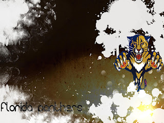 florida panthers (11)