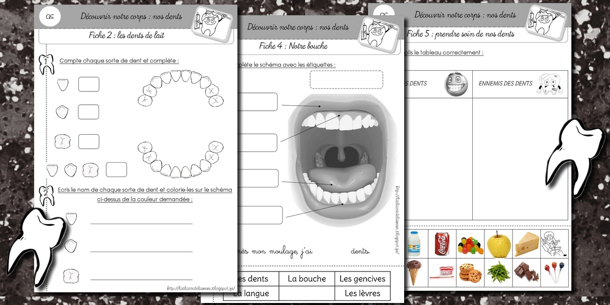 Top La maternelle de Laurène: Les dents YA75
