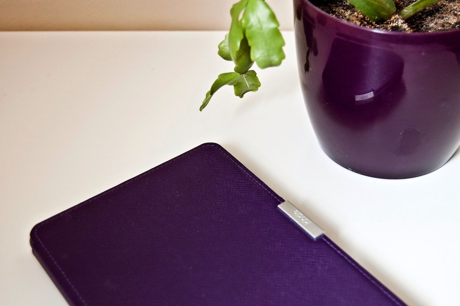 czytnik e-book reader
