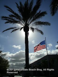 Palm tree, Stars & Stripes