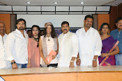 Raj Mahal movie press meet-thumbnail-18