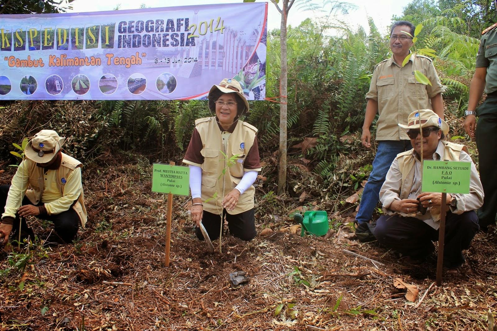 Tim Ekspedisi Geografi Menanam Pohon di Taman Nasional Sebangau