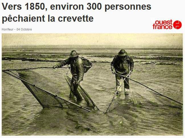 Carpe Pêche Portefeuille Prudent Carpe pêcheurs Portefeuille