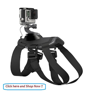 https://www.blibli.com/gp245-dog-harness-strap-for-action-cam-677921.html/?a_blibid=55c6b5c4b2a5a