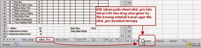 Copy Paste Sheet Excel  Agar Format Tidak Berubah