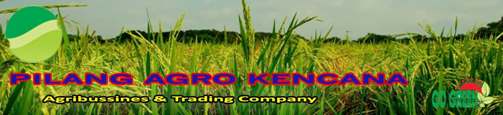 Pilang Agro Kencana