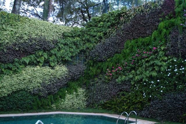 jardim vertical venda: Decoração