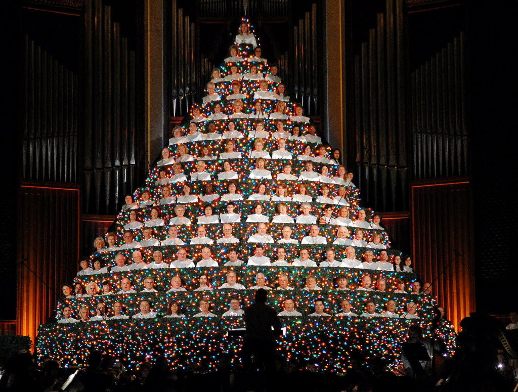 Best living christmas tree photos paper origami guide for Christmas tree in living room photos