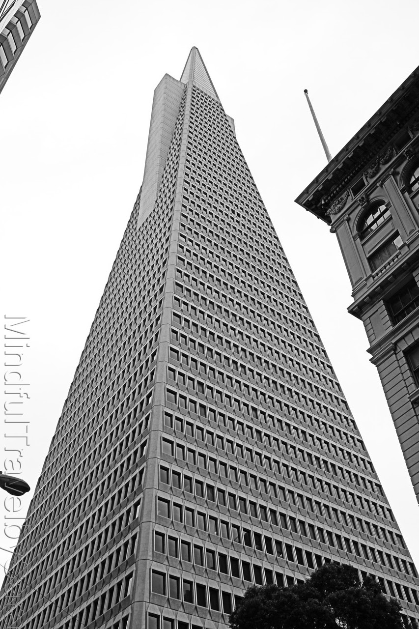 San Francisco in Black and White
