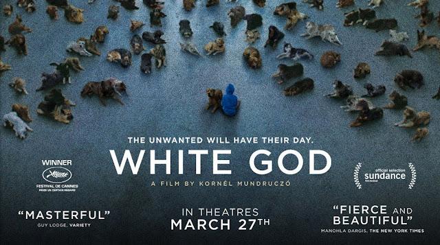 Frases de la película White God (Buscando a Hagen)