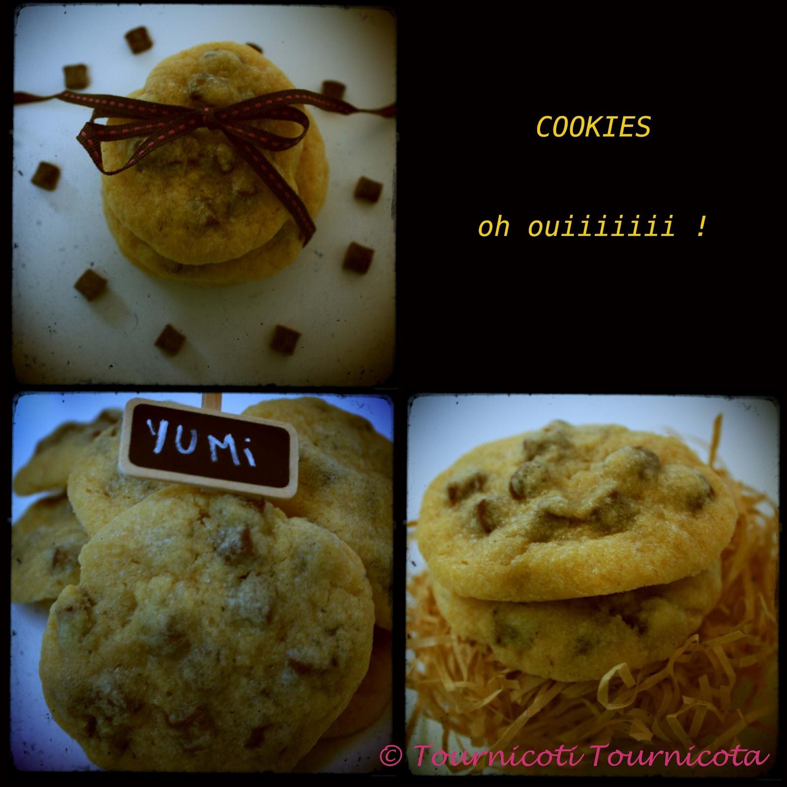 Tournicoti tournicota the cookies la recette de laura todd - Recette cookies laura todd ...