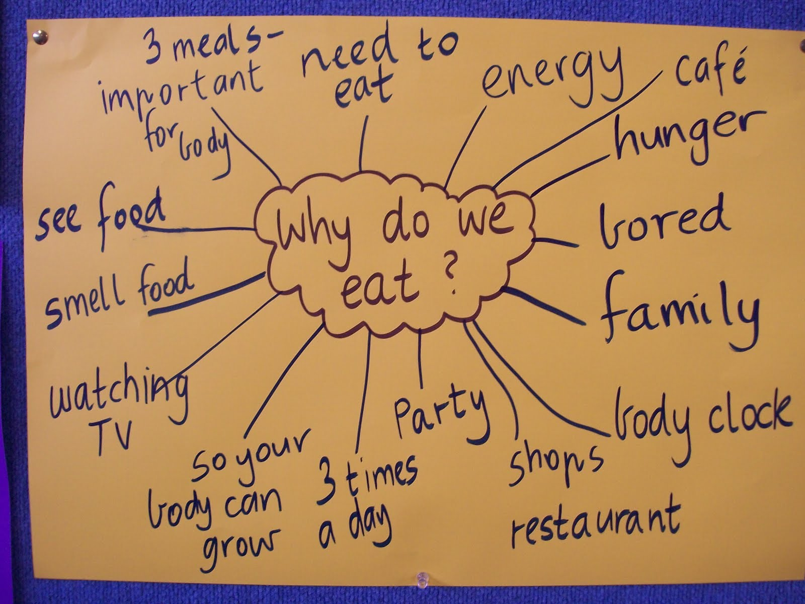 why do we eat essay Some of the foods we eat come from animals and others come from plants.