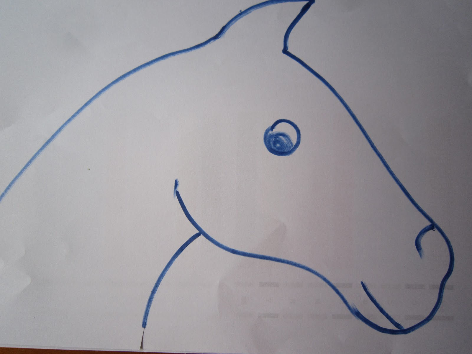 First i drew a horse head not one of my better skills