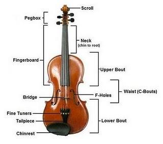 Sejarah, musisi, bagian Violin, Biola, biografi, Sejarah Violin / Biola