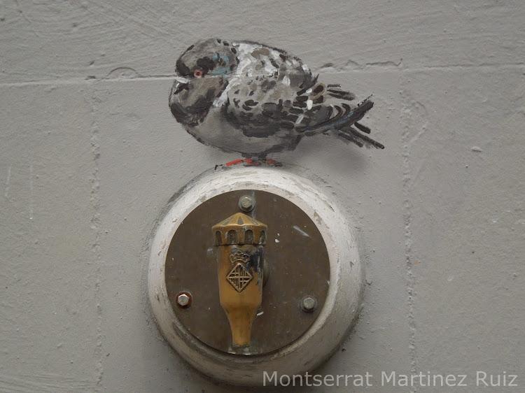 Tres palomas   Montse Fotoblog