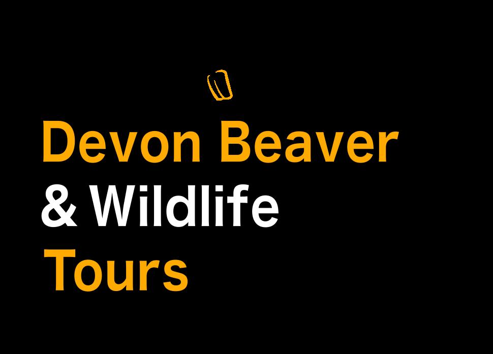 Devon Beaver Tours