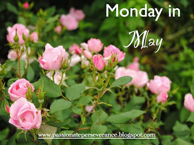 http://passionateperseverance.blogspot.com/2015/05/grateful-on-monday-in-may.html