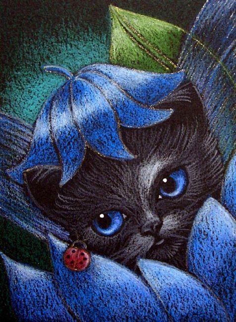 Image Result For Kittens Wallpaper
