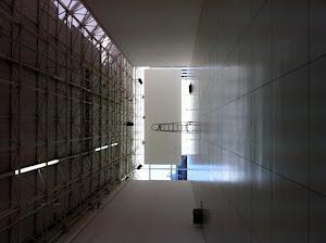 EXPERIMENTO ÓRFÃO (2011)