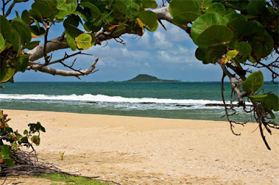 THE BEST BEACHES IN GRENADA