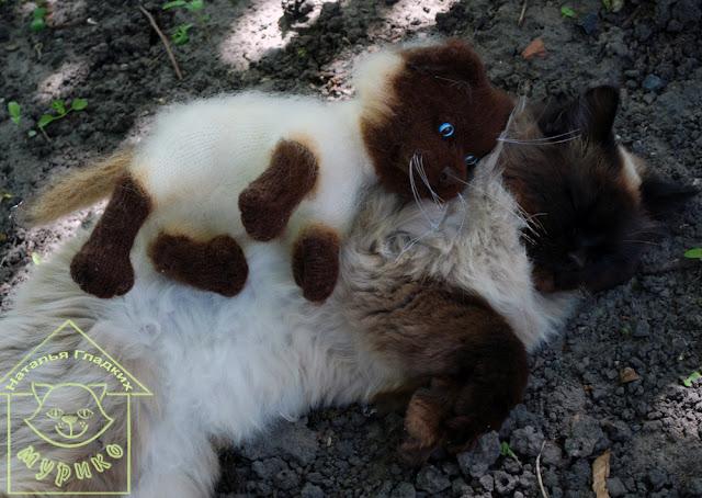 кот, cat, сиам, игрушки, авторские куклы, купить котенка,подарки, мурико, лето