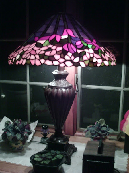 Tiffaney Lamp