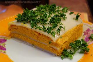 Террин из лазаньи и морковки
