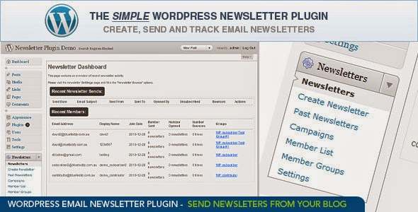 WordPress Newsletters Plugin