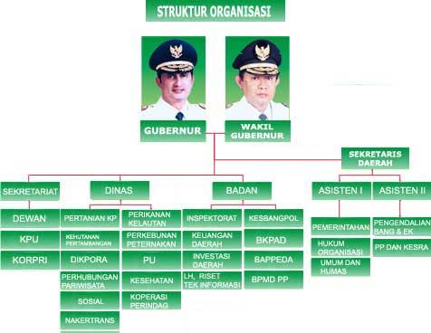 Organisasi, Manajemen, Dan Strukturnya