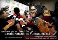Voto Animalista