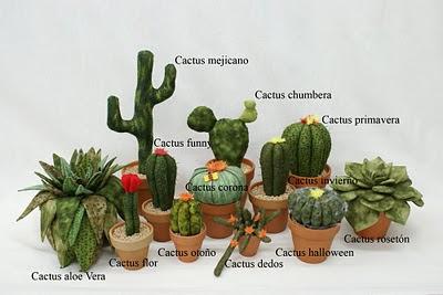 El patchwork de la graci marzo 2011 for Nombres de cactus