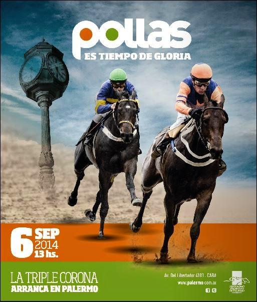 Hipódromo Argentino de Palermo - Pollas -  La Triple Corona arranca en Palermo
