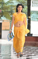 Daisy, bopana, navel, show, pics, in, saree