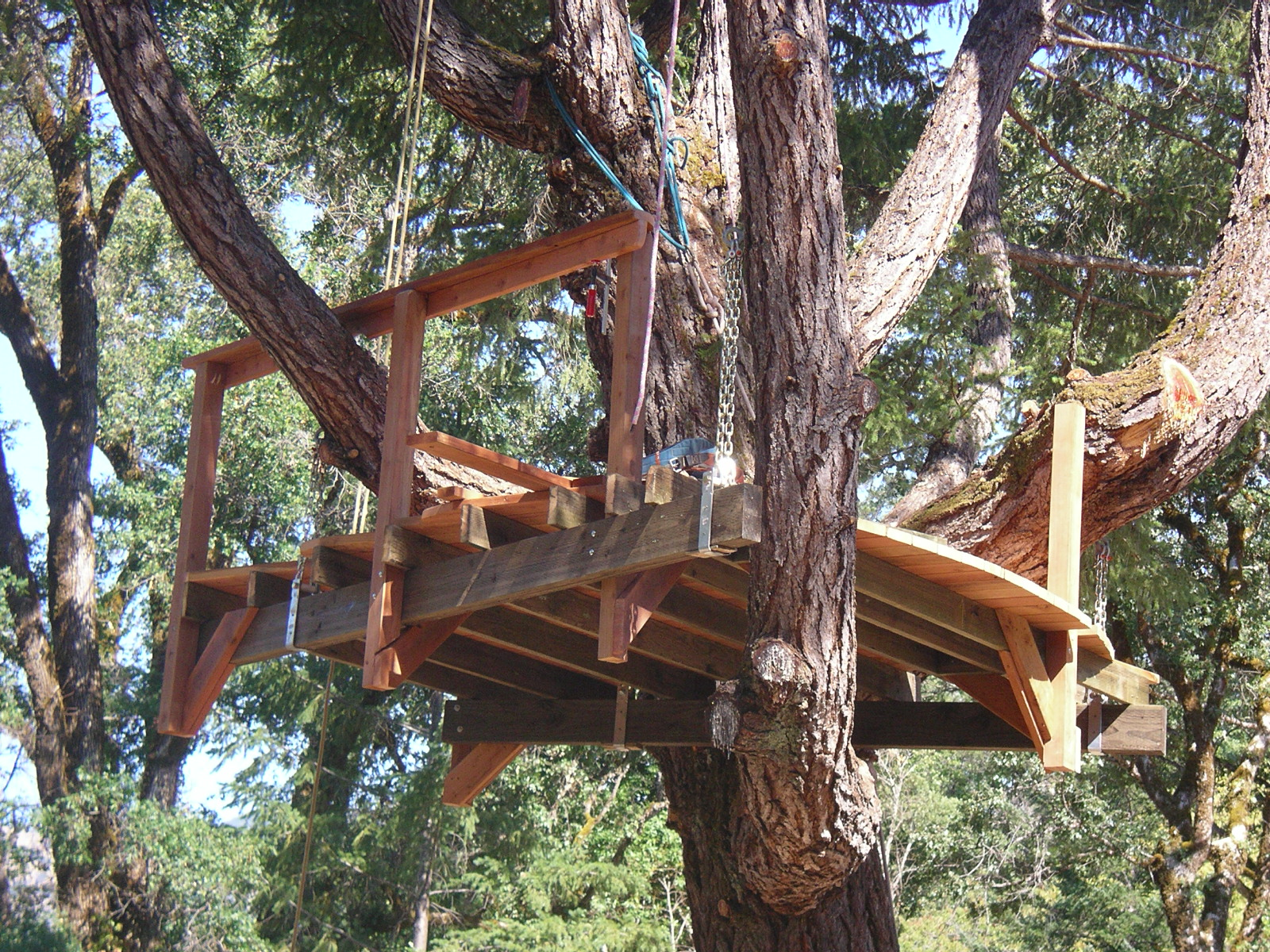 Priority tree suspended tree house deck for Tree house deck plans