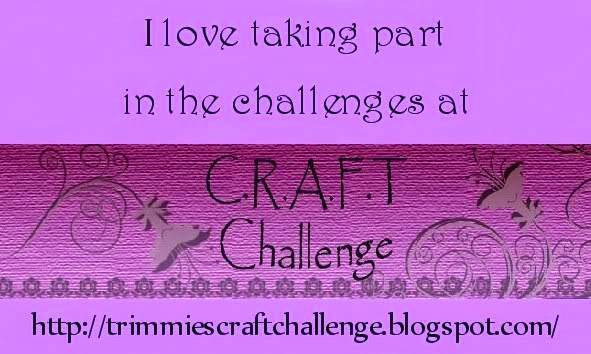 TRIMMIES CRAFT CHALLENGE.