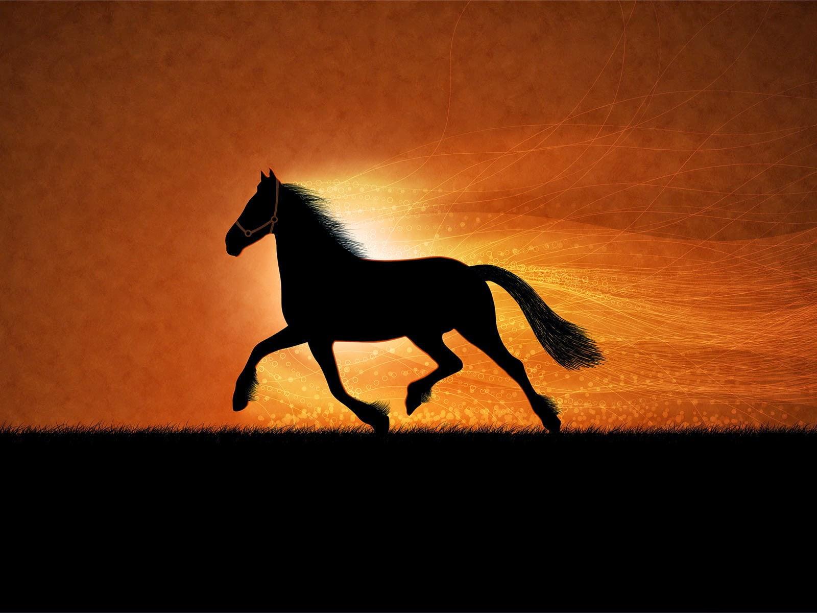Wonderful   Wallpaper Horse Art - wxp%2B(7)  Perfect Image Reference_809524.jpg