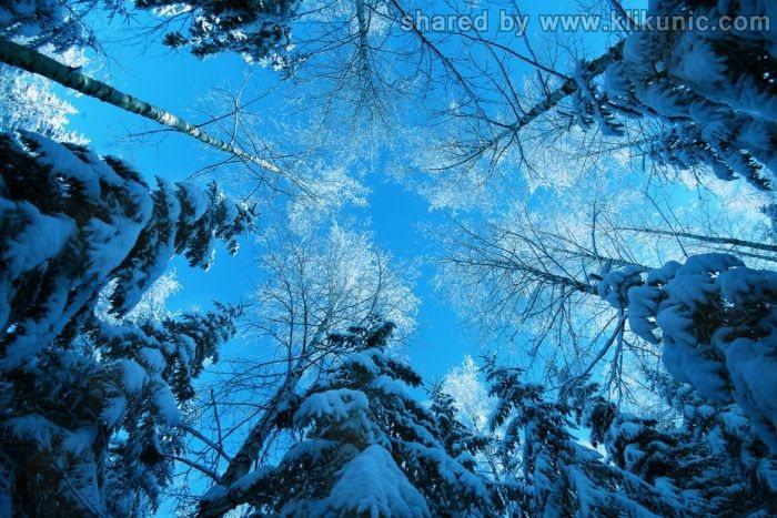 http://1.bp.blogspot.com/-l2HvmRElB7I/TXLfmBTckFI/AAAAAAAAP60/MH8dXqvG-S0/s1600/winter_10.jpg