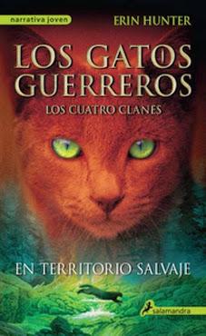 Libro que leo